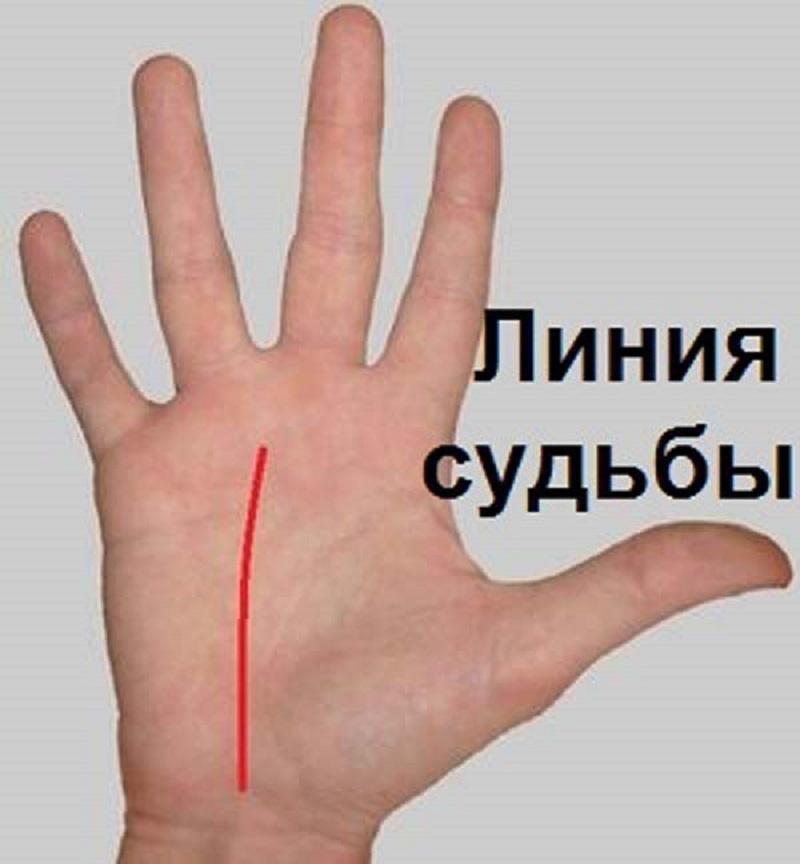 Научись гадать по руке самостоятельно! Цыганка не понадобится…